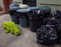 Истоки суеверий: почему нельзя выносить мусор после захода солнца