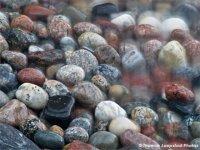 Найдите лицо на картинке: камушки