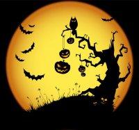 Конкурсы на Хэллоуин: зловещий мешочек