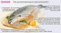 Как выбрать хорошую свежую рыбу