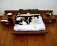 Лежанка для кота со всеми удобствами