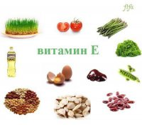 В каких продуктах находится витамин Е