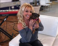 Бритни Спирс завела себе щенка