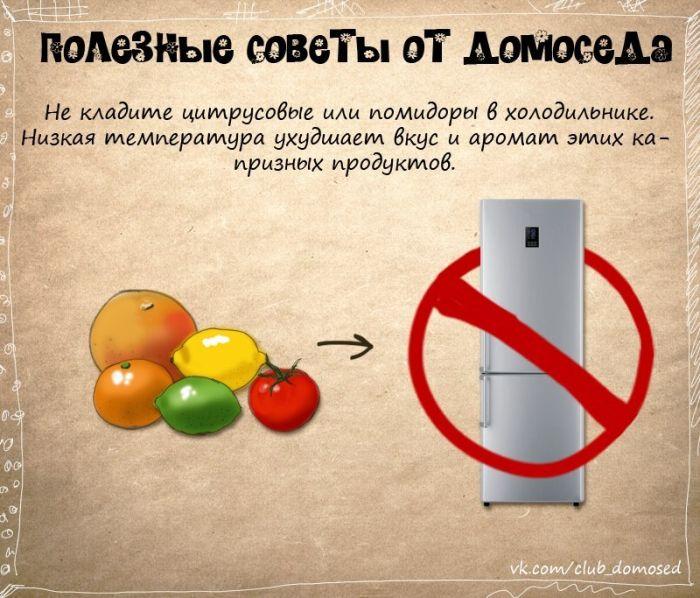Где хранить помидоры и цитрусовые