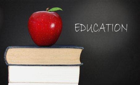 Что выбрать: IELTS или TOEFL?
