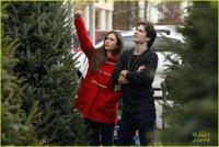 Нина Добрев и Иэн Сомерхолдер выбирают рождественскую елку