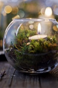 Идея праздничного украшения свечами: свеча во флорариуме