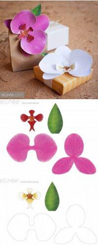 Оригинальная упаковка подарка в виде орхидеи