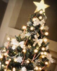 Колядки на Рождество: Ночь тиха, ночь свята