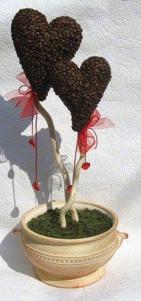 Кофейное дерево любви на День святого Валентина