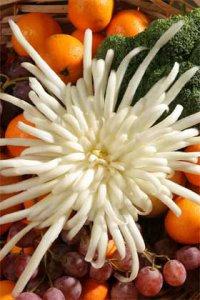 Искусство карвинга: хризантема из пекинской капусты