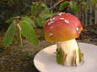 Яблочно-банановый гриб