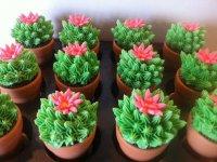 Идея украшения капкейков: кактусы