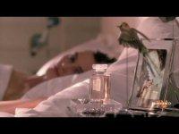 Почему рекламная кампания Chanel с Кирой Найтли оказалась под запретом?