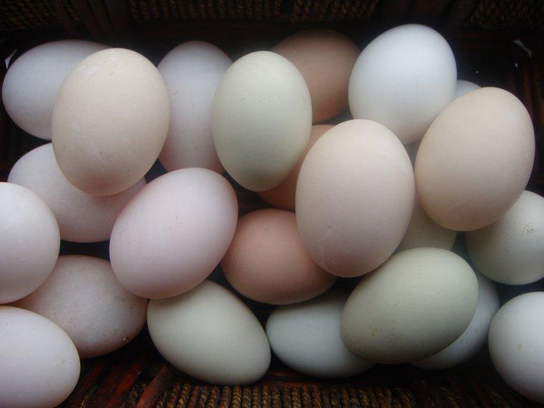 Конкурсы на 8 Марта: Берегите яйца!