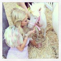 Пэрис Хилтон и ее маленький пони