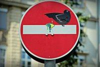 Озорные дорожные знаки от Кле Авраама
