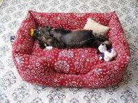 Симпатичный диванчик для вашей собаки или кошки своими руками