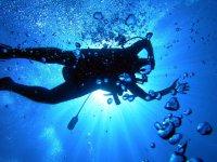 Редкие профессии в Европе: взрывник-аквалангист