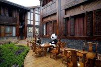 В Китае откроется первый в мире тематический панда-отель