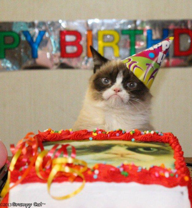 С Днем рождения, Grumpy Cat!