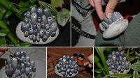 Забавная семейка из камней для украшения цветочного горшка