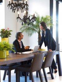 Как ухаживать за цветами в офисе