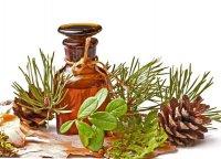 Эфирные масла для здоровья и красоты: хвойные ароматы