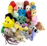 Гигантские плюшевые микробы