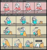 Как едят люди, у которых есть кот и нет кота