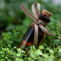 Эфирные масла для красоты и здоровья: ароматы пряных трав