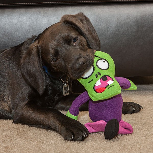 Зомби-игрушки для собаки
