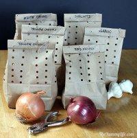 Как хранить лук и чеснок