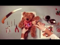 Операция плюшевого мишки