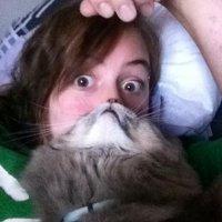 Новый интернет-мем: кошачья борода