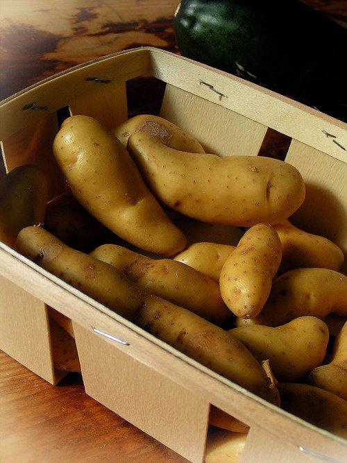 Как правильно покупать картофель