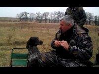 Собака - настоящий друг человека, или как украинские собаки приносят водку
