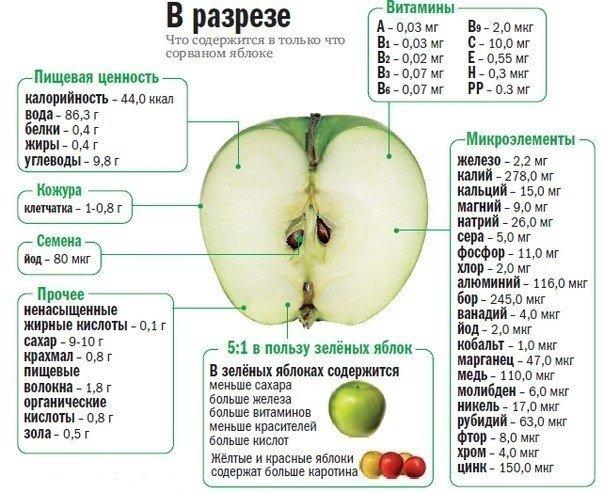 Фрукт в разрезе, или что содержится в только что сорванном яблоке