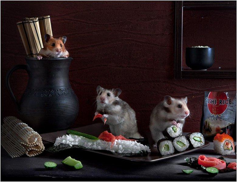 Хомячки готовят суши