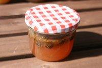 Варенье из сосновых шишек: рецепт 1