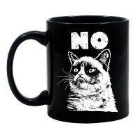Сердитый кот сказал «Нет»
