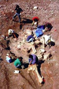 Кто строил пирамиды Египта, или загадка людей-гигантов