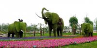 Сад мастеров топиара в Китае