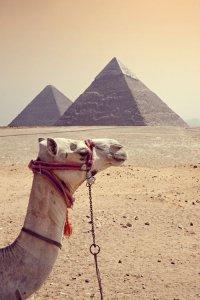 Чего не стоит делать в Египте
