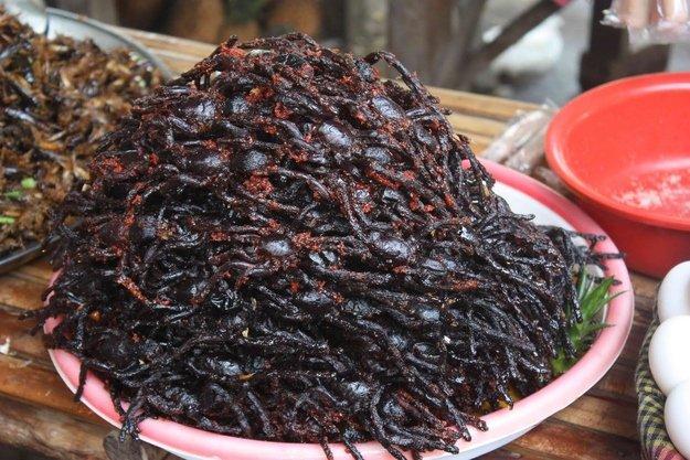 Жареные тарантулы на закуску