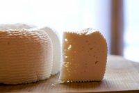 Сыр домашнего приготовления: рикотта и качотта