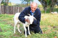Странный брак: 74-летний дедушка и коза