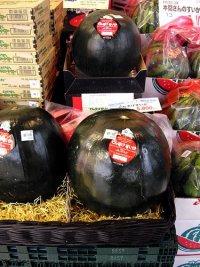 Черный арбуз - самый дорогой и самый сладкий