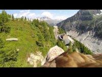 Полет с орлом