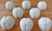 Не мозги, а всего лишь угощение